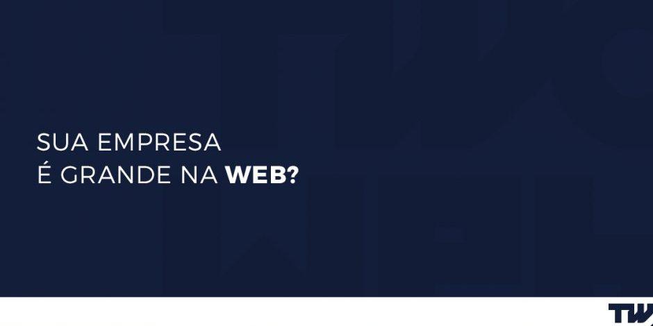 Sua empresa é grande na web?